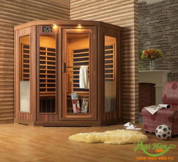 Lắp đặt phòng xông hơi khô trong gia đình và những điều quan trọng bạn cần biết